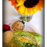 july16couldnt-resist-warm-curried-rice-wrap-with-with-spinach-and-sprouts-and-tomato-and-avocado-with-a-yummy-dipping-sauce-from-the-fabulous-natural-sisters-cafe-in-jt