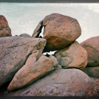feb17i-think-i-will-call-this-boulder-bird-skull-rock