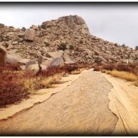 feb28gamma-gulch-road-turned-into-a-gamma-gulch-stream