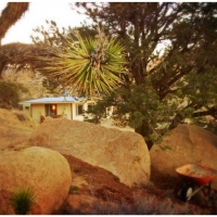 march17a-joshua-tree-a-pic3b1on-juniper-boulders-a-wheelbarrow-and-our-house