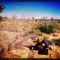 april6the-collector-hi-desert-studies