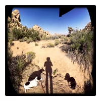may11in-the-wash-with-the-pups-and-a-missing-piece-of-sky